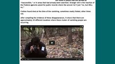 puzzling unexplained disappearances national parks missing shed more light story
