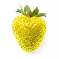 500Pcs Yellow Strawberry Seeds Garden Seeds Fruit Seeds