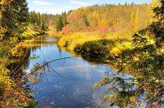 Autumn in Edmonton, Alberta, Canada