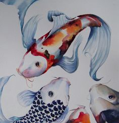 Koi fish represent perserverance in adversity and strength of purpose.