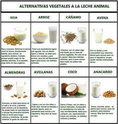 Alternativas vegetales a la leche animal  -  Vegetable alternatives to animal milk
