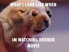Horror Movies LOL - Google Search