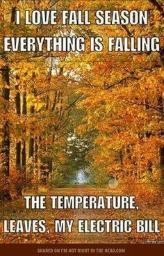 I love fall season. Name one thing you love about fall. When Memes, Fall Memes, Living In Europe, Faith Hope Love, Happy Fall, Fall Season, Wonderful Time, Falling In Love, Everything