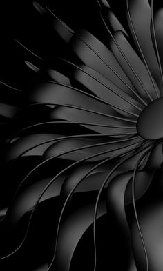 Download 480x800 «Black flower» Cell Phone Wallpaper. Category: Abstract