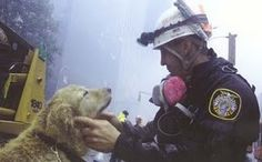 another canine hero.........sniff sniff