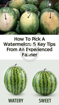 Cut Watermelon, Picking Watermelon, Watermelon Ripeness, When To Pick Watermelon, Cooking Tips, Cooking Recipes, Food Tips, Pan Cooking, Fruit Picking