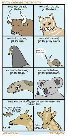Animals defense mechanisms