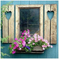 The garden shed window...