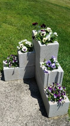 The Pansies Are Thriving In Our Cinder Block Garden. Next Year Iu0027ll Paint