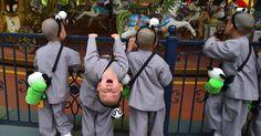20160509 - Crianças sul-coreanas têm momento de lazer em parque de diversões de Seul. Participantes do programa de formação de monges budistas, e fazem um programa de duas semanas de estudos sobre essa filosofia, criado em celebração ao aniversário de Buda, que acontece no próximo dia 14 de maio. Imagem: Jung Yeon-Je/AFP