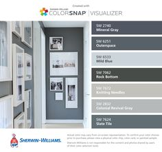 I found these colors with ColorSnap® Visualizer for iPhone by Sherwin-Williams: Mineral Gray (SW 2740), Outerspace (SW 6251), Mild Blue (SW 6533), Rock Bottom (SW 7062), Knitting Needles (SW 7672), Colonial Revival Gray (SW 2832), Slate Tile (SW 7624).