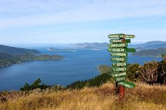 View from Eatwell Lookout at Queen Charlotte Track