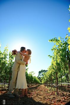 Beltrane Ranch Wedding Calistoga Ca ~ Nicole + Martin | Enluce San Francisco Bay Area Napa Sonoma Wine Country Wedding Photographer Wine Country Wedding Elopement and Intimate Event Glen Ellen Sonoma Valley