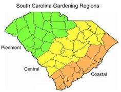 South Carolina Gardening Regions - when to plant by region via Clemson Ext Service