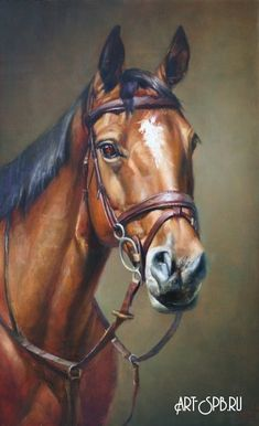 Портрет чемпиона Horse Drawings, Animal Drawings, Arte Equina, Horse Face, Horse Horse, Horse Artwork, Horse Portrait, Equine Art, Watercolor Animals