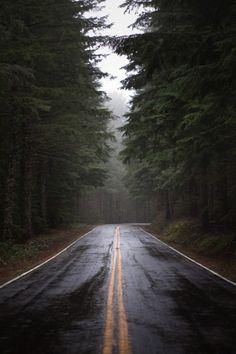 drømmer fra skogen.