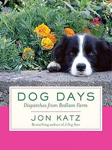 Jon Katz.  Bedlam Farm. If you own a Border Collie this is a must read. I loved every one of Jon's books on his Border Collie's