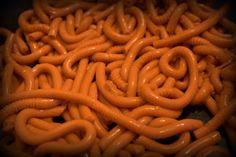 Jello Worms For Halloween