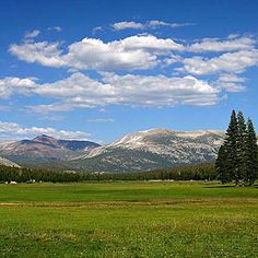 Top wow spots of Yosemite | Tuolumne Meadows