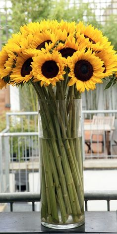 sunflowers..... My favorite kind bundled together in a tall vase
