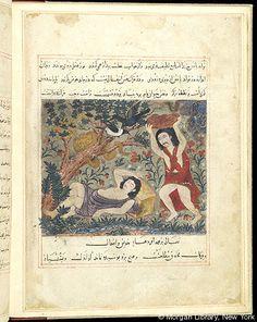 Bestiary, Cain: killing Abel (modern).- The Morgan Library & Museum