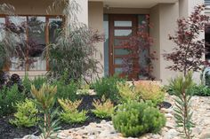 Paal Grant Designs in Landscaping Galleries. Browse photos from Paal Grant Designs in Landscaping Australian Garden Design, Australian Native Garden, Front Garden Landscape, Landscape Design, Landscaping With Rocks, Front Yard Landscaping, Front Gardens, Outdoor Gardens, Pebble Garden