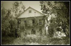 https://flic.kr/p/bD15M | DeLeon Springs, Florida,  USA