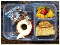 apple/pb sandwich, cornbread, nuts and raisins, mango/kiwi/strawberries