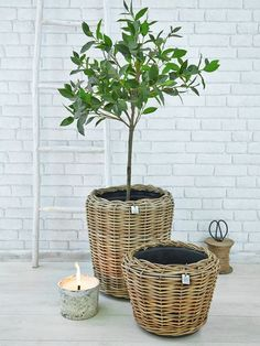 With a cleverly designed inner plastic lining, these rattan planters will look equally at home in either an urban or country garden. Simple styling with high impact!