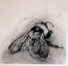 Supreme Portrait Drawing with Charcoal Ideas. Prodigious Portrait Drawing with Charcoal Ideas. Bee Drawing, Drawing Tips, Drawing Ideas, Skull Tatto, I Love Bees, Insect Art, Bee Art, Bees Knees, Pics Art