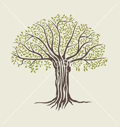 Tree vector. Tree of life sketch by rtguest on VectorStock®