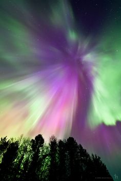 Northern Lights - Posio, Finland