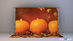 Pumpkin - Photography Backdrop