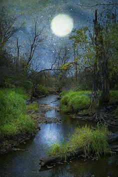 ✯ I LOVE this picture of the moon dancing over a misty Creek