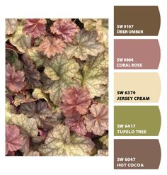 Instantly turn any picture into a palette with ColorSnap, created for you by Sherwin-Williams. Paint Schemes, Colour Schemes, Color Trends, Color Combinations, Paint Colors For Home, House Colors, Sherwin William Paint, Color Palate, Painting Tips