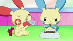 pokemon plusle and minun they are so cute!