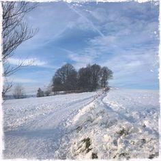 ein wunderschöner Wintersonnentag :-)