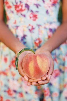 Giving Hands - Peach Eat A Peach, Peach Pit, Peach Orange, Peach Orchard, Giving Hands, Peach Trees, Just Peachy, Southern Weddings, Peach Colors