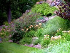 Perennial garden design with tons of colors and textures. Works great on a slope as long as you choose the right ones. Drought tolerant plants work well.