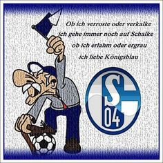 Image result for schalke 04 funny