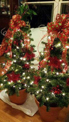 Tomato Cage Christmas Trees! http://wendyjanecreations.com/tomato-cage-christmas-trees/