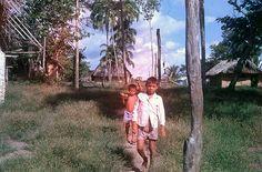 El cacique quiere una Blazer. Un litigio olvidado en la selva venezolana, por Doménico Chiappe | FronteraD