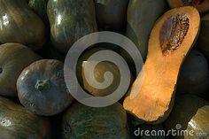 Pumpkin. Vegetables. Pumpkin grade muscat pumpkin.