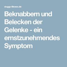 Beknabbern und Belecken der Gelenke - ein ernstzunehmendes Symptom