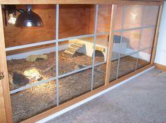 Red-footed Tortoise Habitat - needs plants Tortoise Cage, Tortoise As Pets, Red Footed Tortoise, Tortoise House, Tortoise Habitat, Baby Tortoise, Sulcata Tortoise, Tortoise Turtle, Terrariums