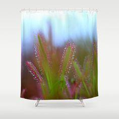 Fairy Like Sundew Shower Curtain by JUSTART on Society6  #justart #society6 #s6 #showercurtain #shower #curtain #bathroom #drosera #sundew #tropical #botanical #blue #green #red #drops #macro