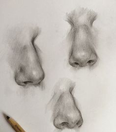 Nose drawing, drawing tips, drawing sketches, pencil drawings, art draw Nose Drawing, Drawing Tips, Drawing Sketches, Painting & Drawing, Pencil Drawings, Art Drawings, Arte Sketchbook, Face Sketch, T Art