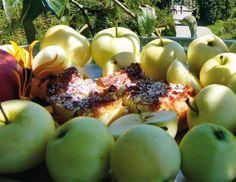 Topfen-Apfel-Schnitten - Rezept - ichkoche.at