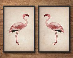 Flamingo affiches, Flamingo wordt afgedrukt, vlammend kunst aan de muur, Flamingo kunst, roze flamingo, Vintage afdrukken, kunst aan de roze flamingo print, grote muur
