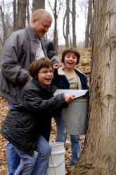 Photo about Two girls surprised by a full sap bucket when maple sugaring with their dad. Image of late, elementary, jackets - 2830656 Tapping Maple Trees, Real Maple Syrup, Sugaring, Fun Hobbies, Kids Events, Dads, Stock Photos, How To Make, Maple Sugar